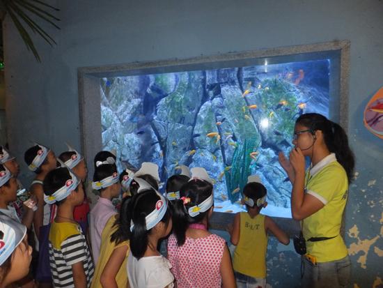 南宁市青少年海洋之星夏令营活动成功举办