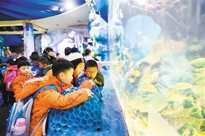 张松) 参观海洋馆,科技馆,博物馆,游览大雁塔,大明宫国家遗址公园,古