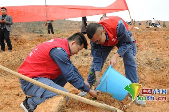 田阳县青年志愿者为新栽种的小树苗浇水。田阳县团委 供图